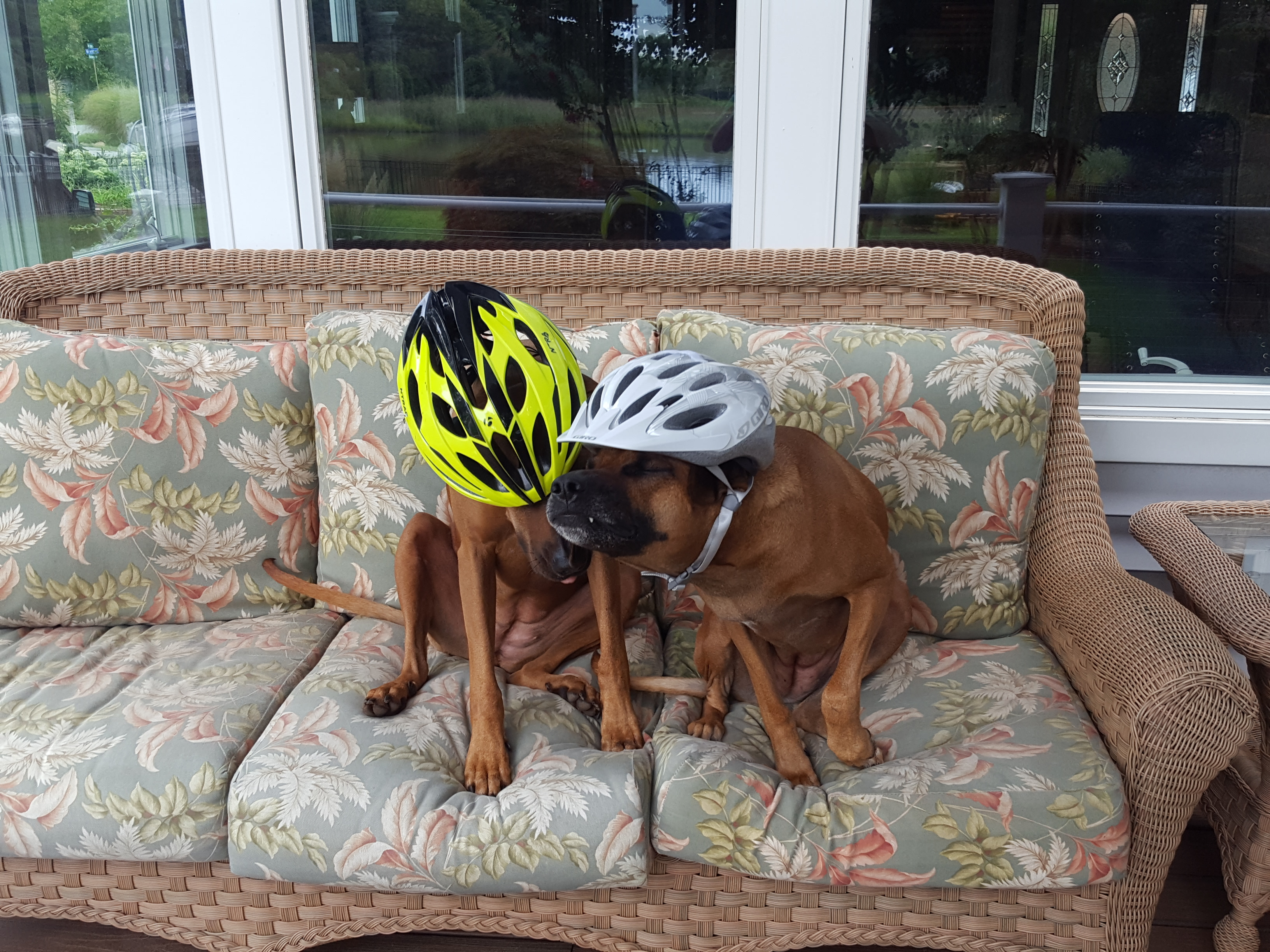 lilly&lilah helmets
